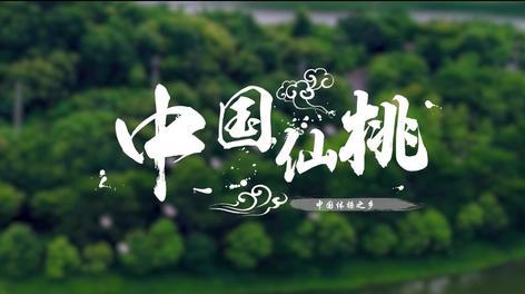 中国体操之乡,世界冠军摇篮——仙桃