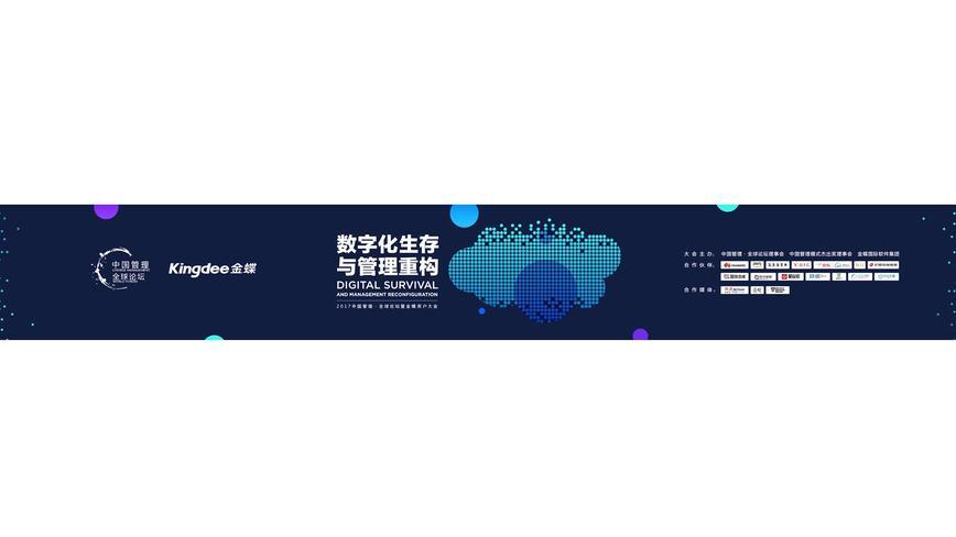 金蝶中国管理全球论坛 开场动画片