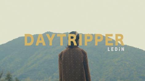 LEDIN 2020 FALL | DAYTRIPPER